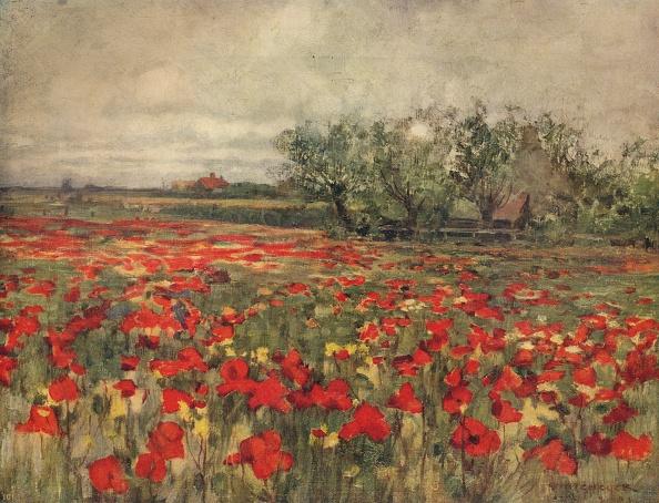 Overcast「The Poppy Field」:写真・画像(12)[壁紙.com]