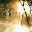 泉水壁紙の画像(壁紙.com)