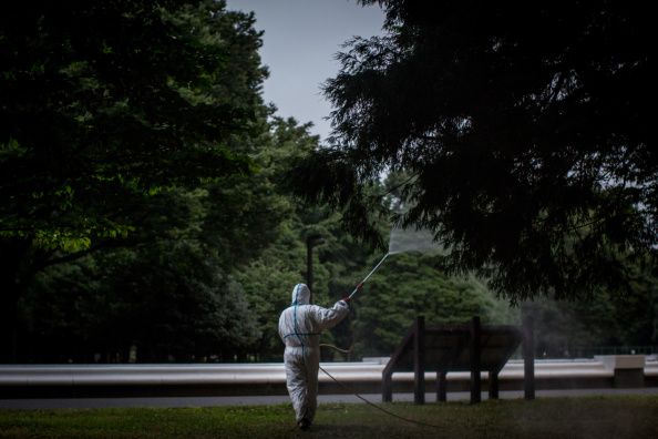 Spray「Japan Copes With First Dengue Fever Case In Nearly 70 Years」:写真・画像(5)[壁紙.com]