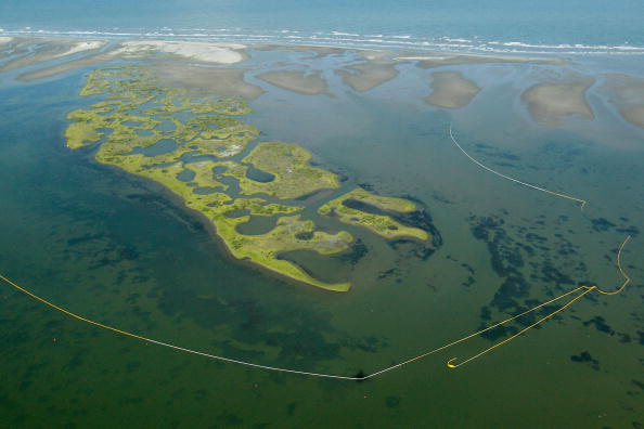 Gulf of Mexico「Louisiana Battles Continued Spread Of Oil In Its Waters And Coastline」:写真・画像(1)[壁紙.com]