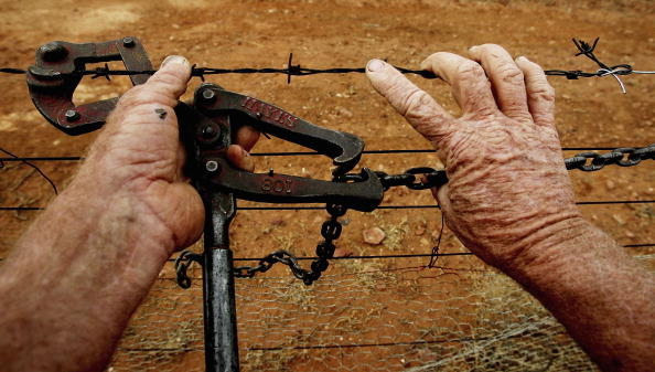 Protection「Australian Dog Fence - The Longest Fence In The World」:写真・画像(2)[壁紙.com]