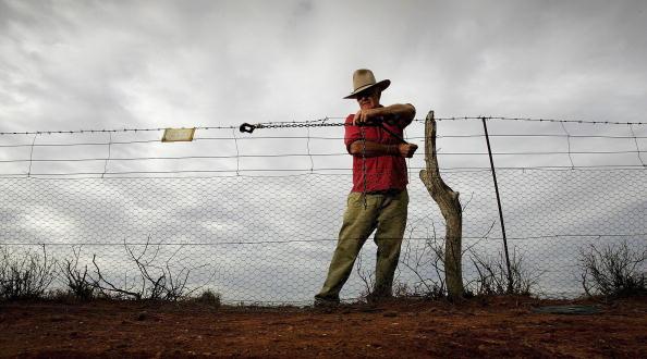 Fence「Australian Dog Fence - The Longest Fence In The World」:写真・画像(1)[壁紙.com]