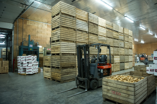 Pennsylvania「Potatoes being processed on potato farm」:スマホ壁紙(6)