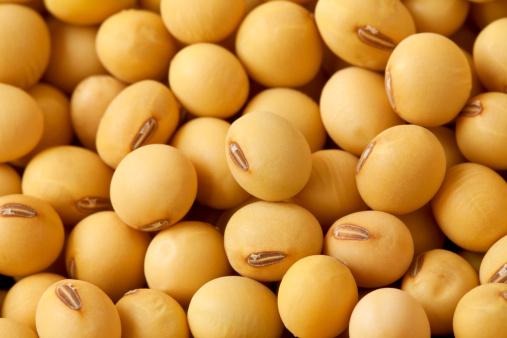 Soybean「Soybean」:スマホ壁紙(18)