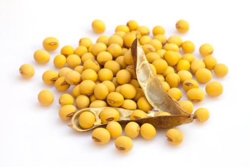 Soybean「Soybean」:スマホ壁紙(7)