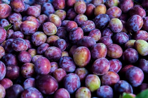 Plum「Full-frame of damson plums.」:スマホ壁紙(8)