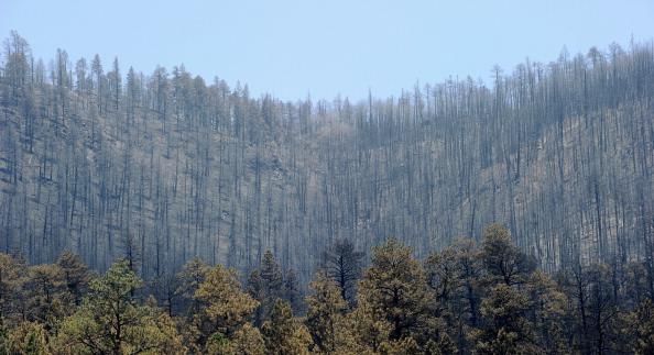 Mountain「Massive Arizona Wildfire Spreads, Threatening Nearby Towns」:写真・画像(16)[壁紙.com]