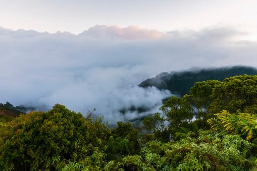 Kalalau Valley「USA, Hawaii, Koke'e State Park, Koke'e State Park, View to Kalalau Valley」:スマホ壁紙(7)