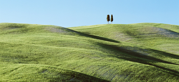 Val d'Orcia「Two solitary Cypress Trees on a grassy hillside」:スマホ壁紙(17)