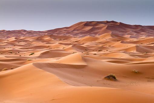 Arid Climate「Red sand dunes in Erg Chebbi, Sahara desert. Merzouga, Morocc」:スマホ壁紙(17)