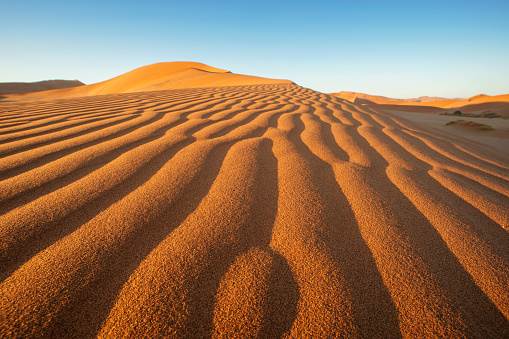 Namib-Naukluft National Park「Red Sand Dunes landscape scene in Sossusvlei, Namib-Naukluft National Park, Namibia」:スマホ壁紙(6)