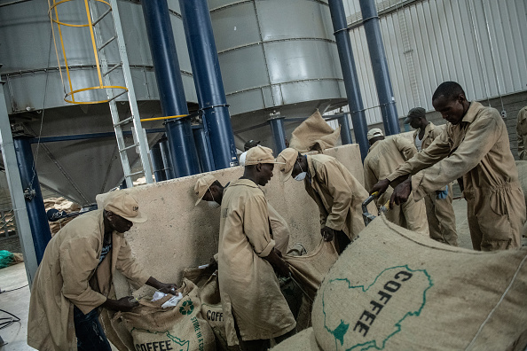 Coffee Roaster「Kenya's Coffee Producers, Long Focused On Export, Grow A Coffee Culture At Home」:写真・画像(15)[壁紙.com]
