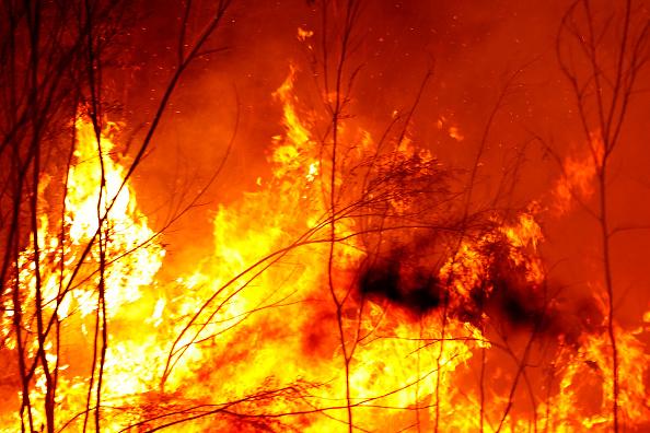 オーストラリア「Evacuations Begin Following East Gippsland Bushfires」:写真・画像(18)[壁紙.com]