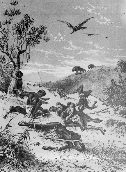 Animals Hunting「Abandoned Slaves」:写真・画像(13)[壁紙.com]