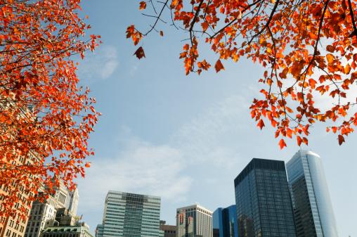 Low Angle View「Autumn panorama of Lower Manhattan - New York City」:スマホ壁紙(18)