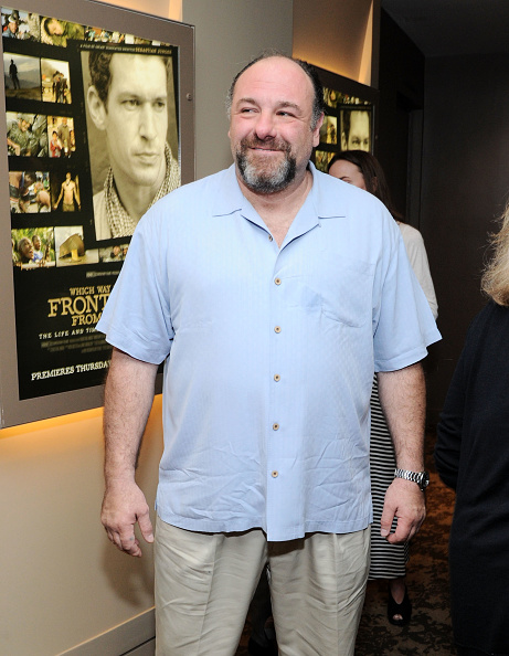 """James Gandolfini「""""Which Way Is The Frontline From Here?"""" New York Premiere - Reception」:写真・画像(10)[壁紙.com]"""
