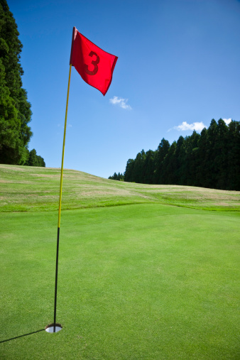 Putting - Golf「Flag and Hole No. 3 on Golf Course」:スマホ壁紙(17)