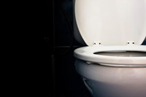 スイセン「トイレ」:スマホ壁紙(17)