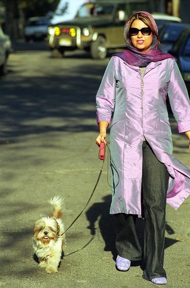Iranian Culture「Walking The Dog In Tehran」:写真・画像(5)[壁紙.com]