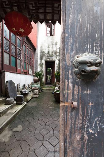 アケビ「Suzhou,Zhejiang,China」:スマホ壁紙(8)