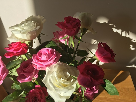 ブーケ「Vase of Roses in Bright Sunlight with Shadows Behind」:スマホ壁紙(3)