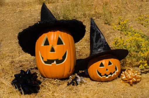 Pumpkin「Halloween pumpkin on the tree」:スマホ壁紙(3)