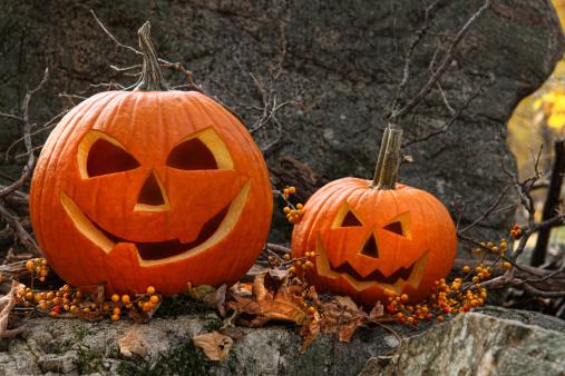 ハロウィン「Halloween pumpkins on rocks in forest」:スマホ壁紙(14)