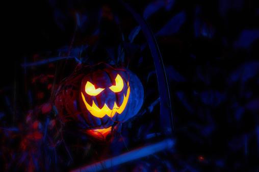 Hell「Halloween Pumpkin」:スマホ壁紙(12)