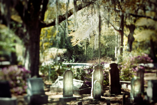 Charleston - South Carolina「Graveyard at a small church, Charleston」:スマホ壁紙(15)