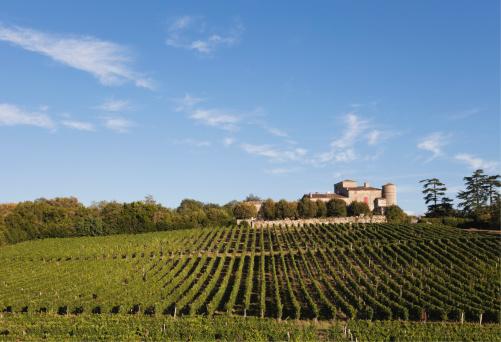 France「France, Bordeaux, Vineyards and Chateau Lacaussade」:スマホ壁紙(13)