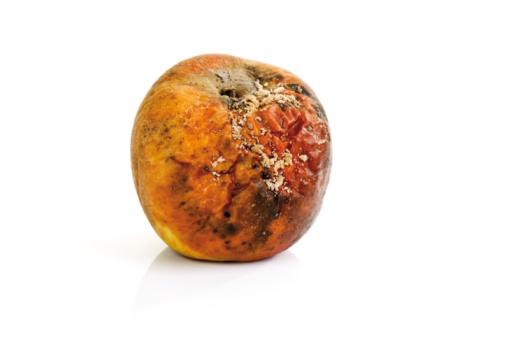 Unhygienic「Moldy apple, close-up」:スマホ壁紙(1)