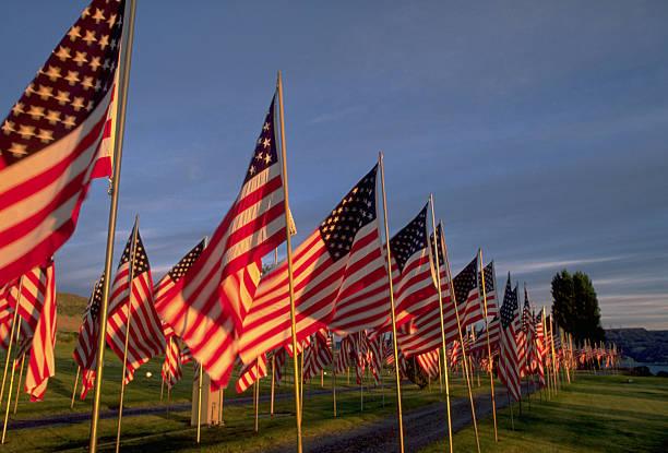 Flags on Memorial Day:スマホ壁紙(壁紙.com)