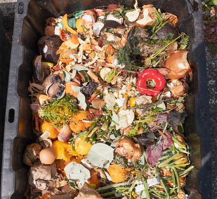 Compost「Leftovers in compost container」:スマホ壁紙(15)
