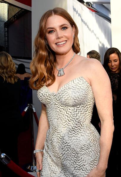 Amy Adams「91st Annual Academy Awards - Red Carpet」:写真・画像(9)[壁紙.com]