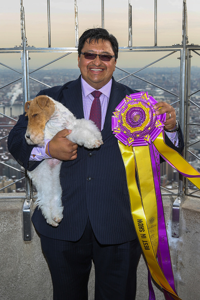 "Empire State Building「""Best In Show"" Winner Sky The Fox Terrier Visits The Empire State Building」:写真・画像(8)[壁紙.com]"