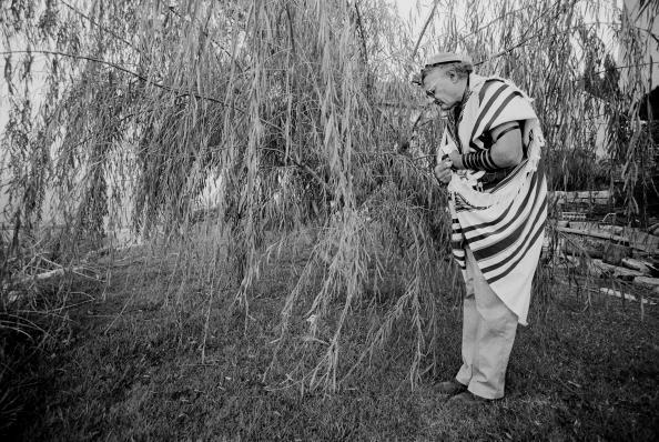 Tom Stoddart Archive「Settlers in Israel」:写真・画像(11)[壁紙.com]