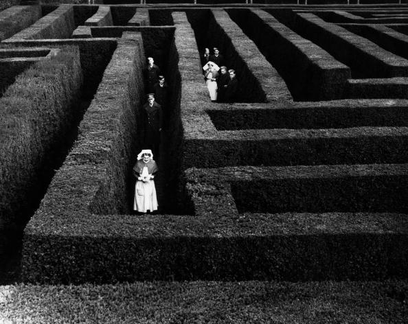 Lost「Garden Maze」:写真・画像(10)[壁紙.com]