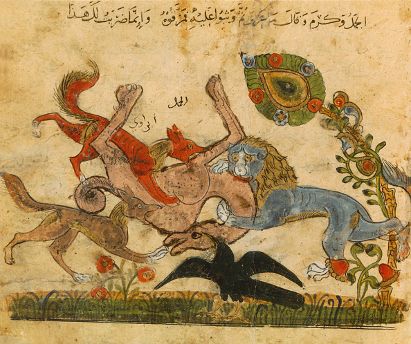 Fairy Tale「Lion Beats A Camel」:写真・画像(12)[壁紙.com]