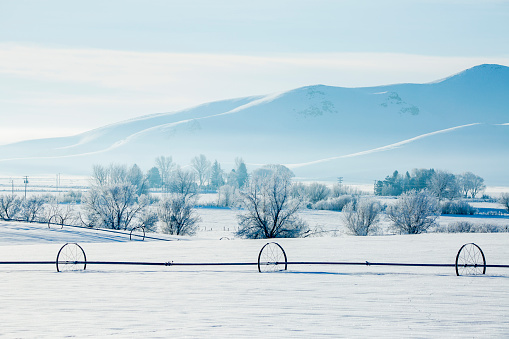 The Nature Conservancy「Irrigation system in snowy rural field」:スマホ壁紙(13)