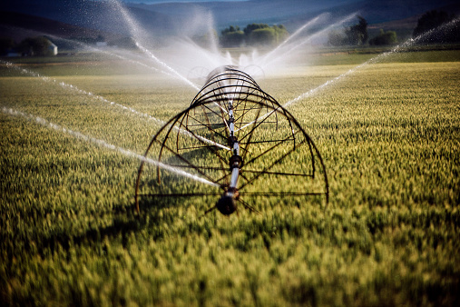 Spraying「Irrigation system watering crops on farm field」:スマホ壁紙(0)