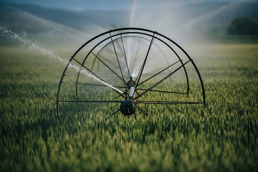 Spraying「Irrigation system watering crops on farm field」:スマホ壁紙(12)