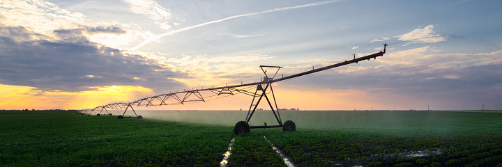 Spraying「Irrigation system watering soybean field」:スマホ壁紙(5)