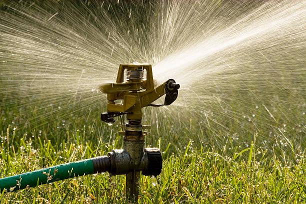 Irrigation sprinkler watering grass.:スマホ壁紙(壁紙.com)