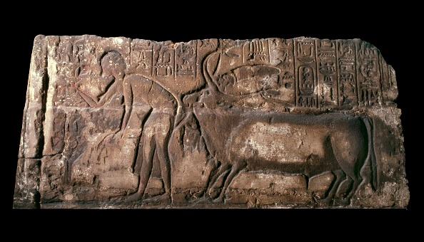 Male Likeness「Sandstone Block Carved In Sunken Relief」:写真・画像(5)[壁紙.com]