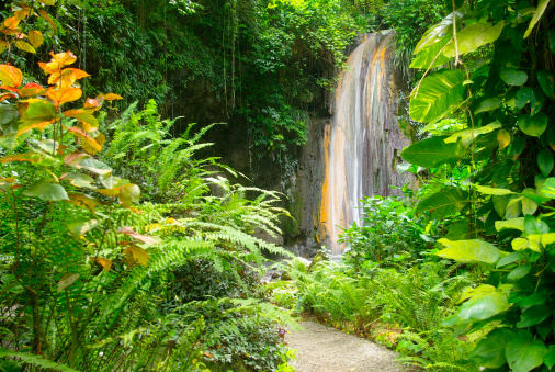 St「spectacular diamond falls of soufriere st lucia」:スマホ壁紙(17)