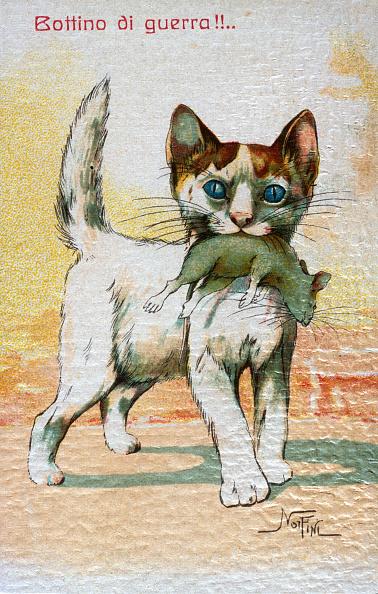 子猫「Like A Cat With The Mouse」:写真・画像(6)[壁紙.com]