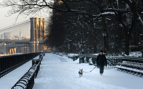 Brooklyn - New York「Another Winter Storm Brings Snow To New York City」:写真・画像(12)[壁紙.com]