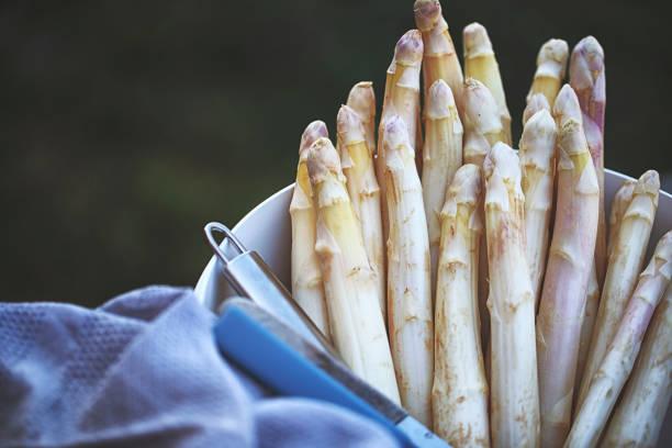Fresh white german asparagus peeled:スマホ壁紙(壁紙.com)