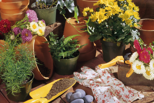 Protective Glove「Flower pots and gardening tools」:スマホ壁紙(4)