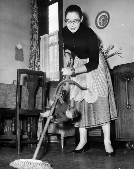 Sweeping「Home Help」:写真・画像(3)[壁紙.com]